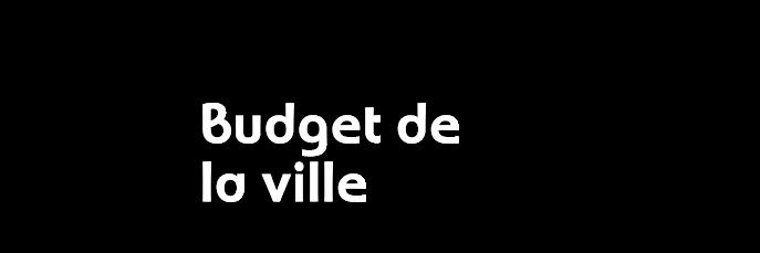 budgetville